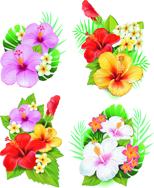 beautiful flowers vector   vector flower free download, Beautiful flower