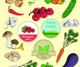 Fresh Food label design vector 01