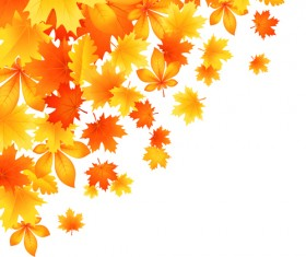 Beautiful autumn Leaves vector 01