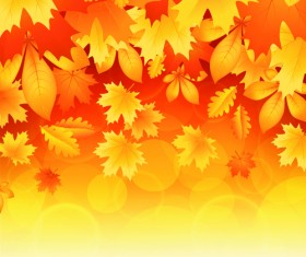 Beautiful autumn Leaves vector 03