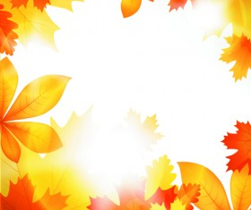 Beautiful autumn Leaves vector 04