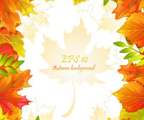 Maple Leaves design elements vector 05