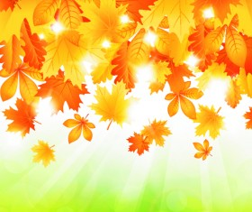 Beautiful autumn Leaves vector 05