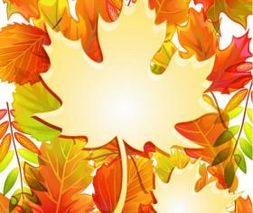 Maple Leaves design elements vector 06