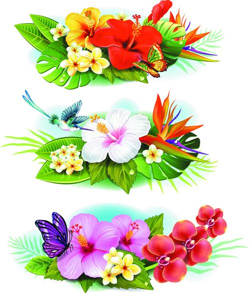 Flowers borders vector set 04 free download
