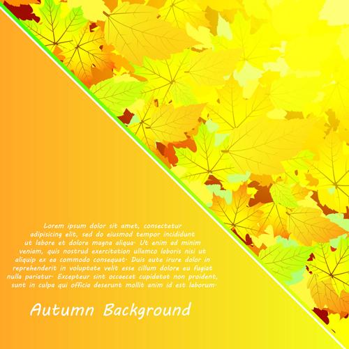 Autumn beautiful background vector set 09