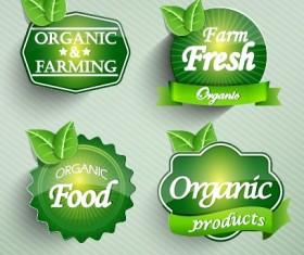 Natural Food label design vector 01