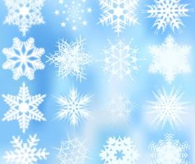 Different snowflakes pattern design vector set 01