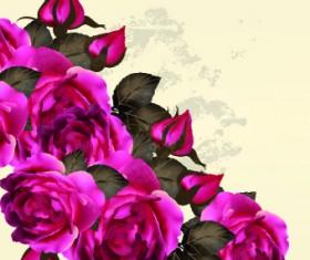 Vintage Purple Roses vector set 03