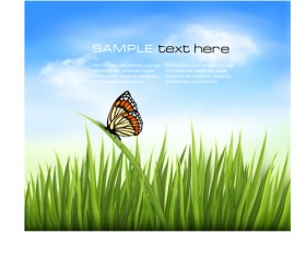 Beautiful butterfly and green grass vector background 01