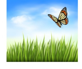 Beautiful butterfly and green grass vector background 03