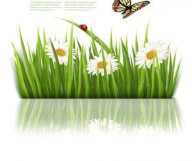 Beautiful butterfly and green grass vector background 04