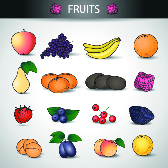 Different fruits vector icons