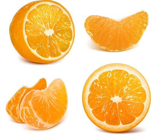Vivid Fruits Design Vector Graphics 04 Vector Food Free