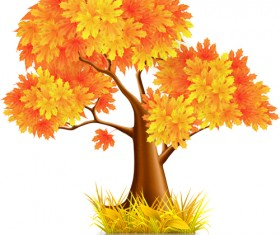 Beautiful autumn elements vector set 01