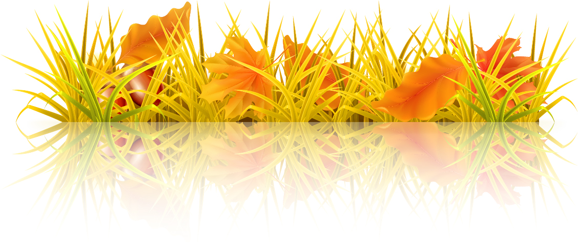 Beautiful Autumn Elements Vector Set 02 Over Millions