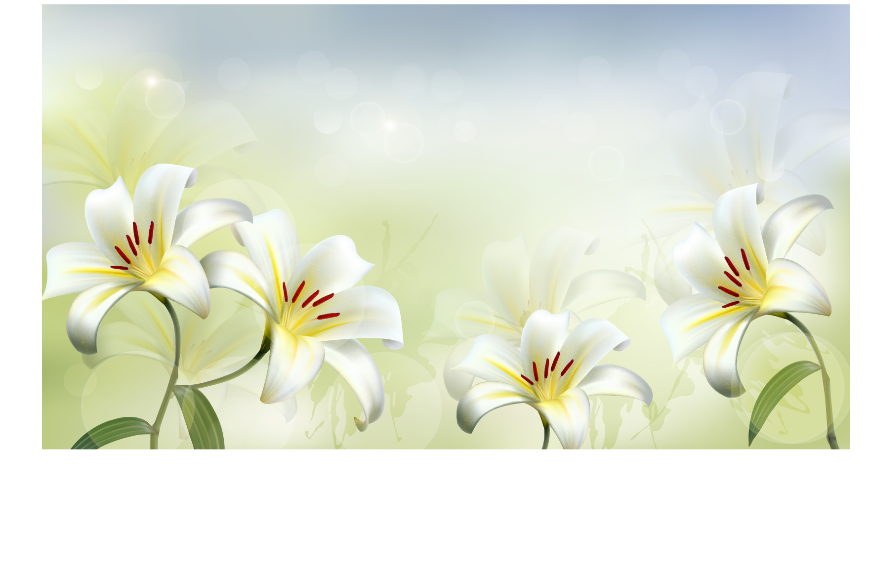Beautiful white flower vector background 02 free download beautiful white flower vector background 02 mightylinksfo