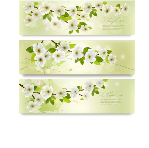 Beautiful white flowers vector banner 01