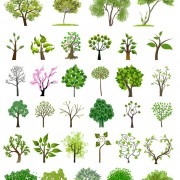 Link toDifferent trees creative design vector