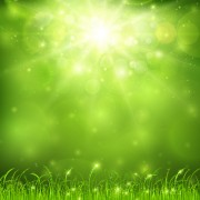 Link toGreen nature and sunlight background vector