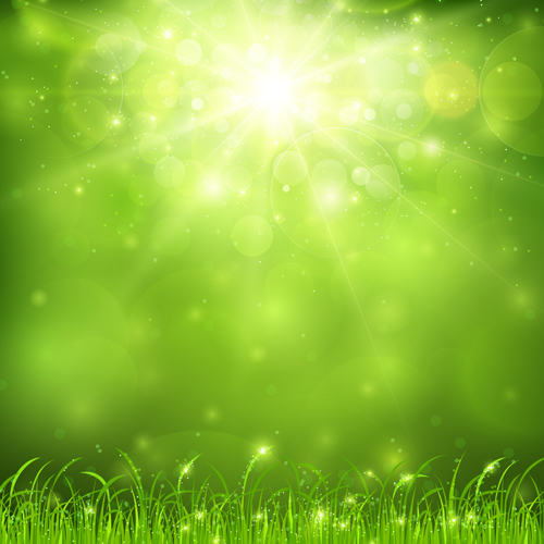 Green nature and sunlight background vector - Vector ...