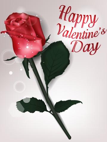 Valentines Day rose cards design vector 04