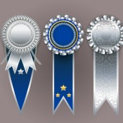 Link toCreative colored award badges vector 04