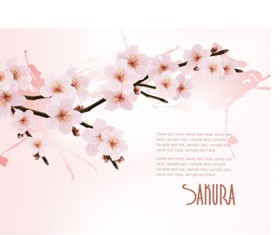 Beautiful cherry vector background art