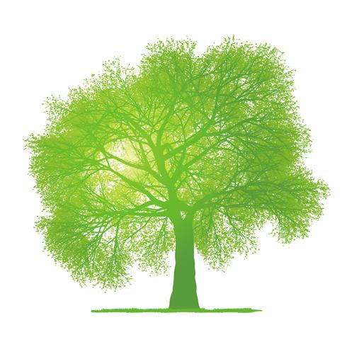Plant Roots Graphic Design