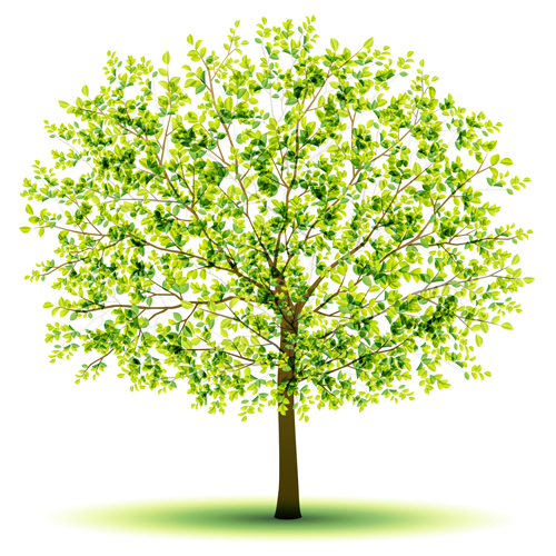 creative green tree design vector graphics 03