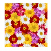 Link toDifferent flower seamless pattern creative vector