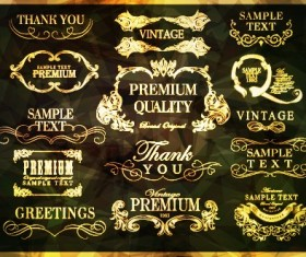Golden frame with labels ornament vector 01