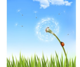 Green grass with dandelion natural elements vector