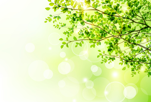 Green Leaf With Halation Background Vector 01 Vector