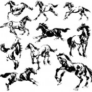 Link toHand drawn horse vectors set