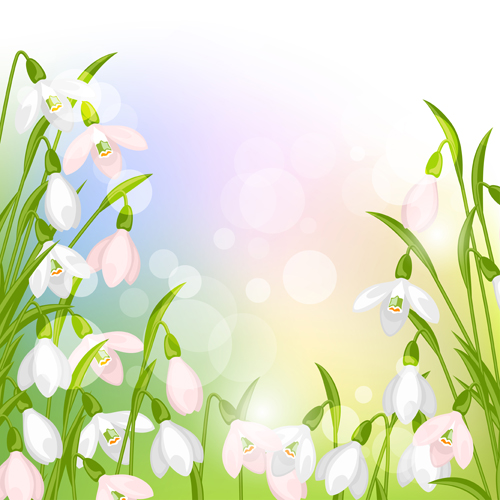 snowdrops flowers with shiny background vector free download