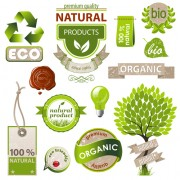 Link toNatural with eco labels and tags vector