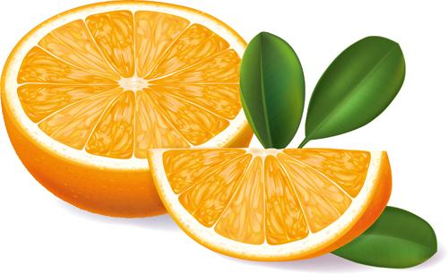 Orange segments creative vector - Vector Food free download