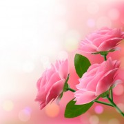 Link toVector set of spring flowers design graphics 01