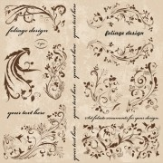 Link toVintage spring floral ornaments elements vector 01