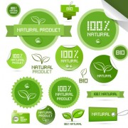 Link toCreative natural product stickers and labels vector 02