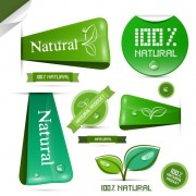 Link toCreative natural product stickers and labels vector 03