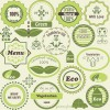 Green natural labels design vector material 02
