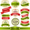 Retro premium quality ribbon labels vector 01