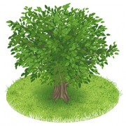 Link toSpring green tree design vector graphic 05