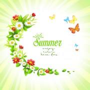 Summer flower with butterflies background material