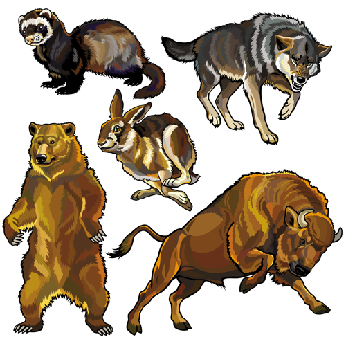 Vector set of wild animals design graphic 04