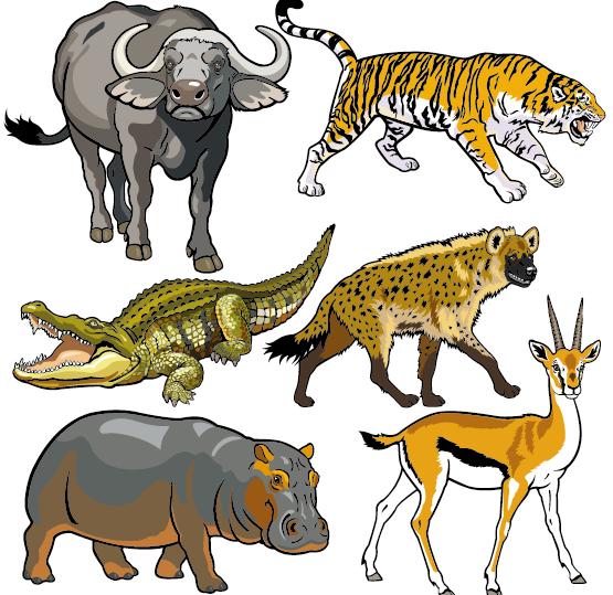Vector set of wild animals design graphic 06