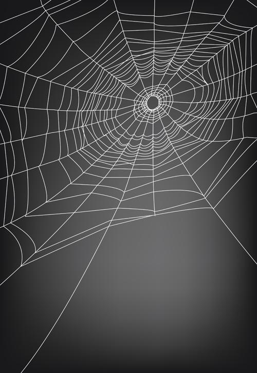 Vector Illustration Web Designs: Vector Spider Web Design Background Graphics 03 Free Download