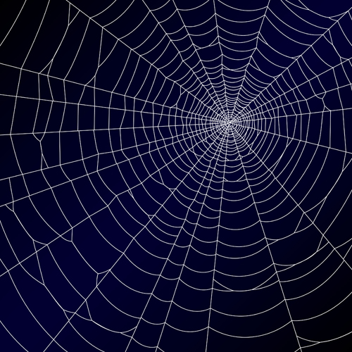 Vector spider web design background graphics 04